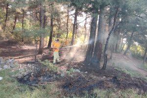 Kestel'de Kısıtlamada Mangal Yapmak İsteyen Şahıslar Ormanı Yaktı
