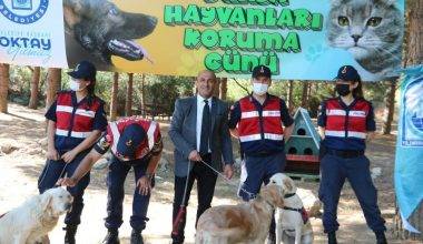 Jandarma Hayvanları Koruma Gününü unutmadı